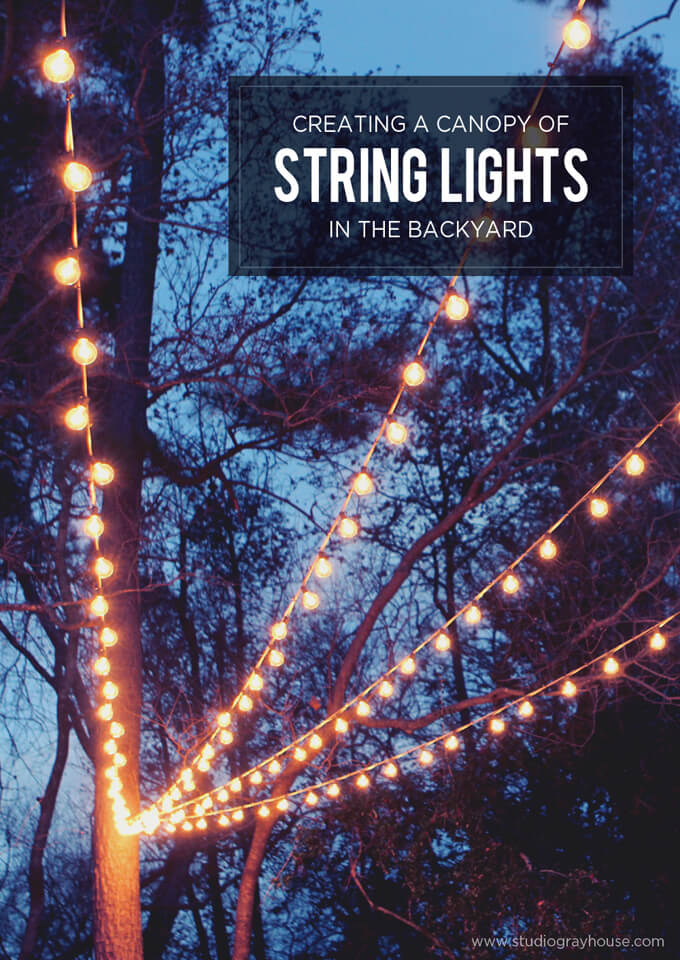 Best Way To String Lights On A Real Tree : A Canopy of String Lights in our Backyard Gray House Studio