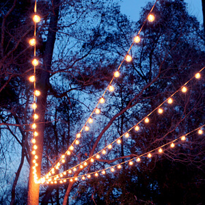 Canopy of String Lights