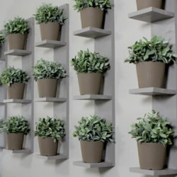 Vertical Plant Shelves DIY Video